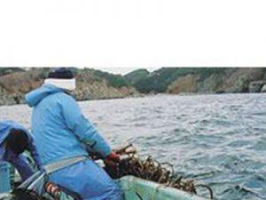 岩手県 田老町漁港様 ロープ引き上げ