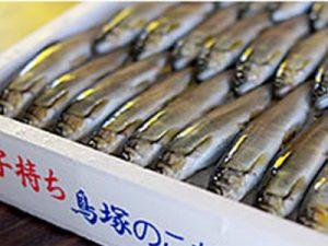 滋賀県 鳥塚様 トップ画像