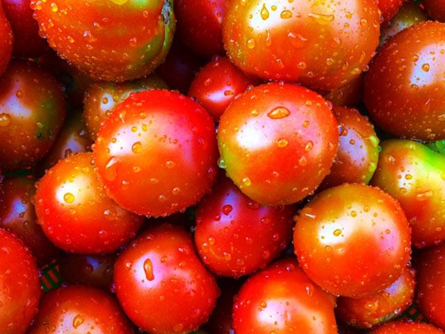 活水器ディレカの水で元気に成長した農作物。